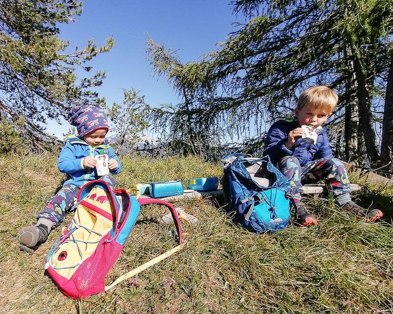 Geführte Wanderung für die ganze Familie in der Steiermark_Alpinschule Bergpuls2