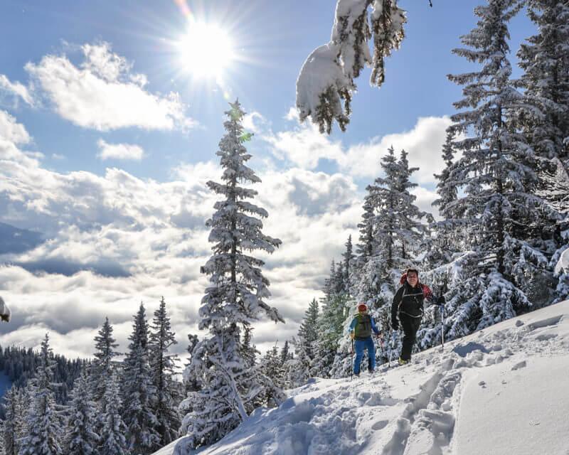 schneeschuhwandern-im-gesaeuse-bei-alpinschule-bergpuls-2